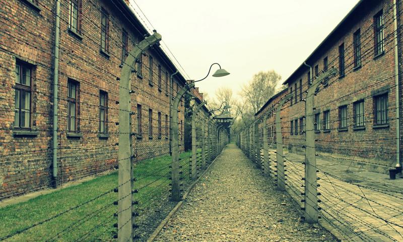 Schoolreis Auschwitz