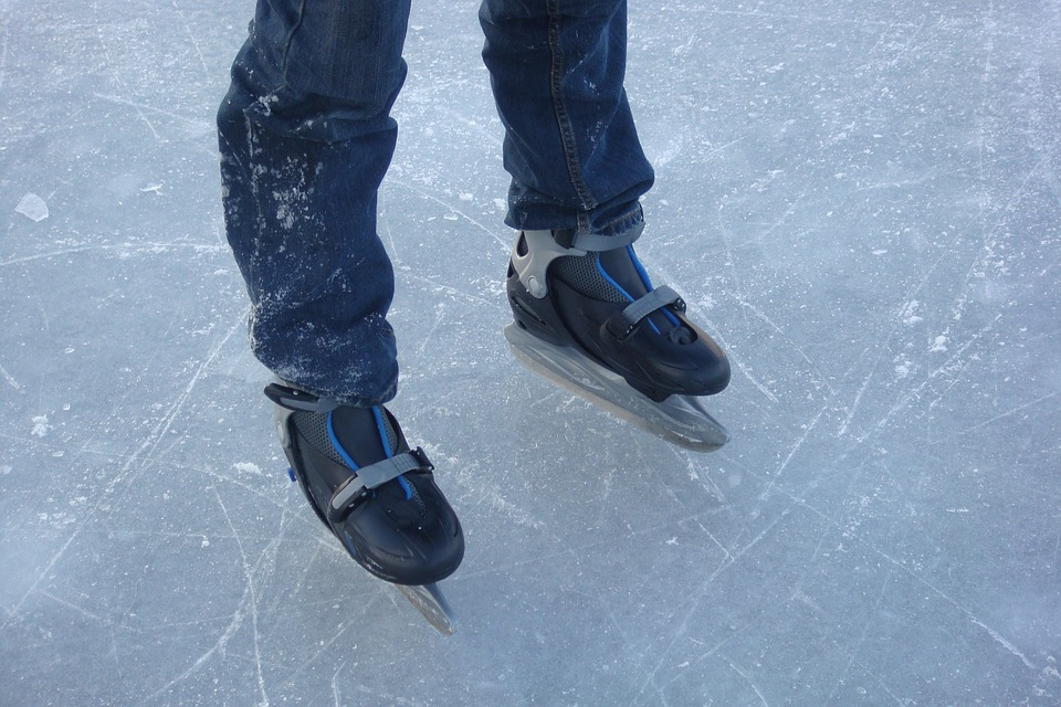 Flevo on ice Biddinghuizen dagtocht