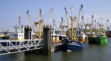 Dagtocht Mosterd & Lauwersmeer