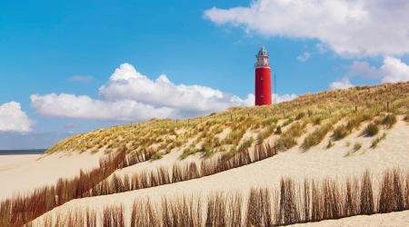 Dagtocht Texel afbeelding 3