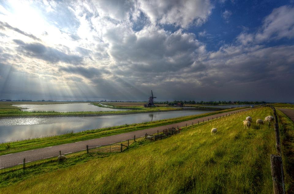 Dagtocht Texel afbeelding 1