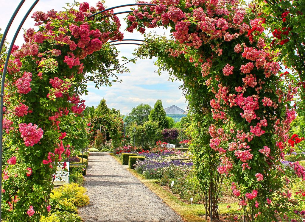 Busreis Rosarium Harz