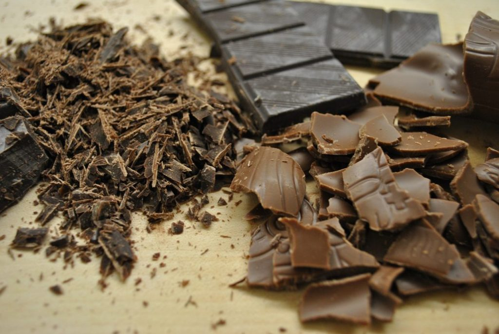 Chocoladefabriek dagtocht